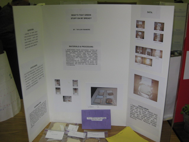 basketball science fair projects