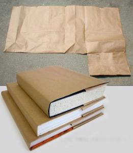 Brown Bag for book cover