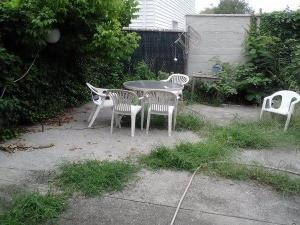 Backyard Pic of Brooklyn Studio