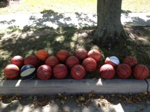 Basketballs under treee