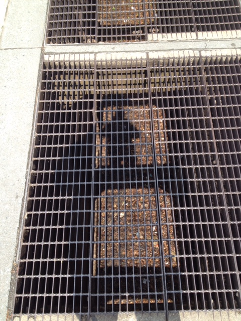 Subway Grating